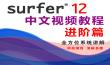 Surfer12基础与提升视频课程-进阶篇