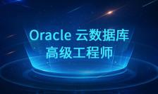Oracle高级工程师
