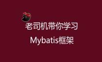Mybatis基础与提升视频教程