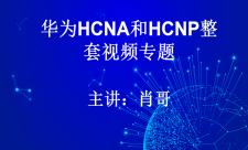 华为HCNA和HCNP整套视频专题套餐(肖哥)
