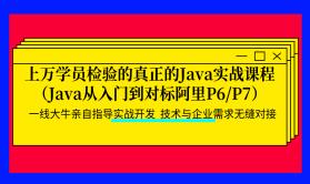 上万学员检验的真正的Java实战课程(Java从入门到对标阿里P6/P7)持续更新