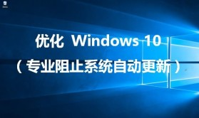 优化 Windows 10(专业阻止系统自动更新)
