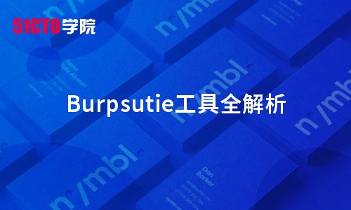 Burpsutie工具全解析