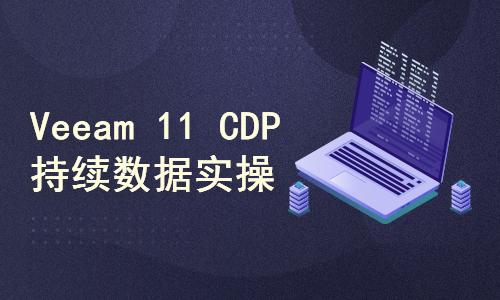 Veeam v11 CDP 持续数据保护