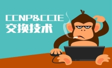 CCNP&CCIE交换技术系列课程专题